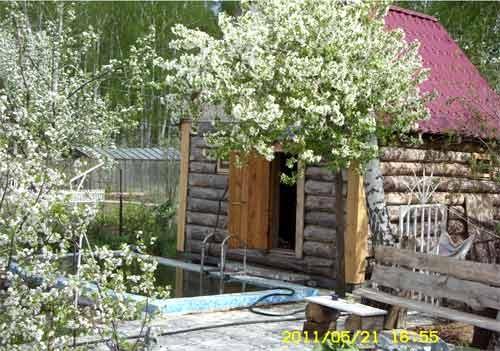 Баня своими руками и сад
