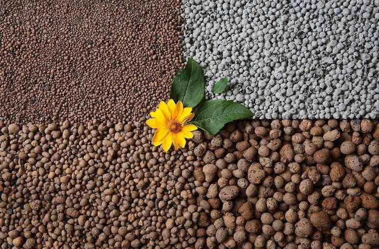 Керамзит - субстрат для выращивания овощей