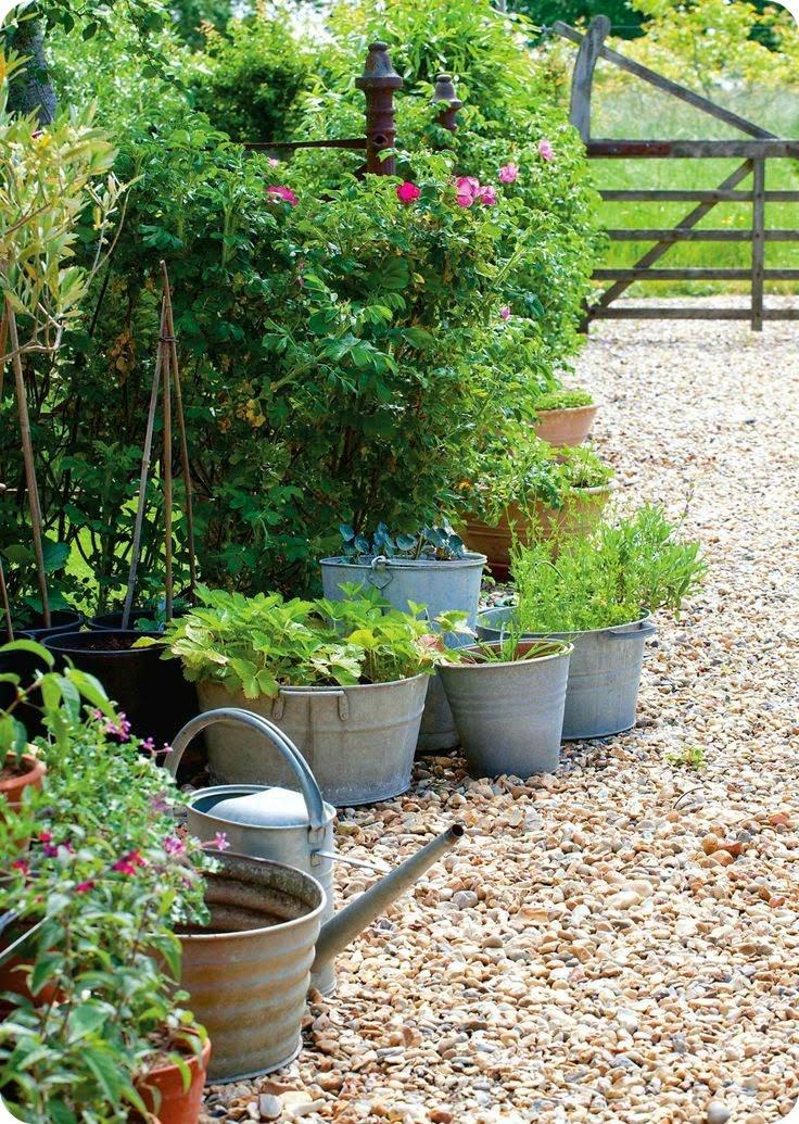 Ландшафтный дизайн садовые растения