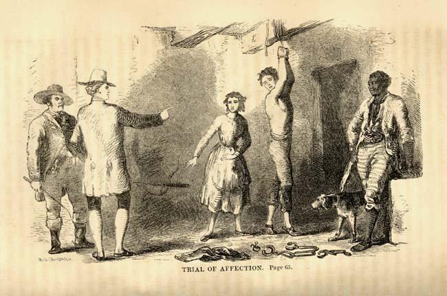 Позабытые белые рабы. Англосаксы, история, сша