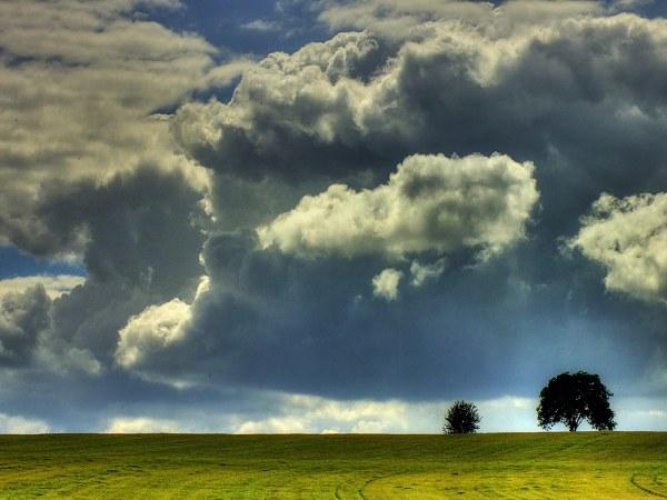 Завораживающая природа от Эрика Гонсалвеса