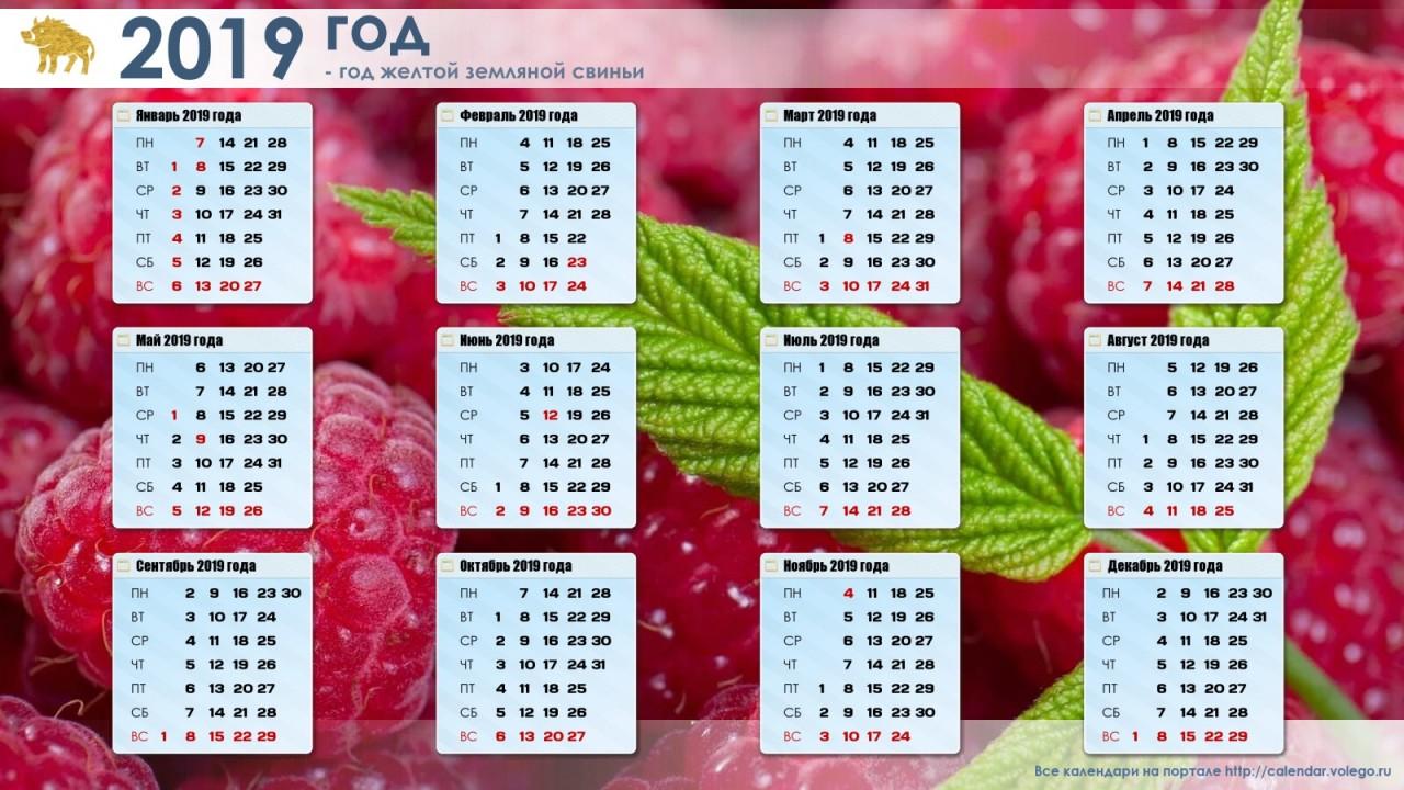 Календарь праздников, выходных, сокращенных дней в 2019 году