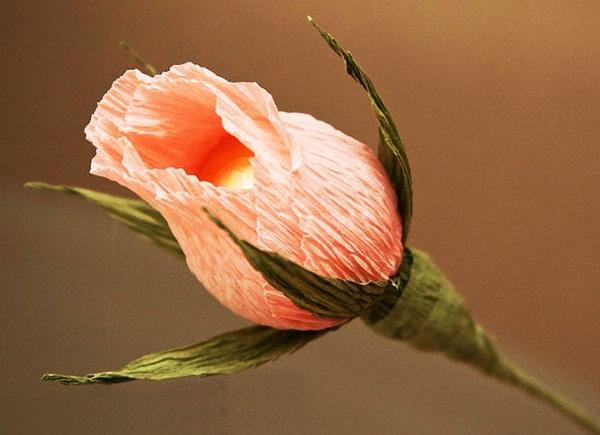 букет роз из гофрированной бумаги 6