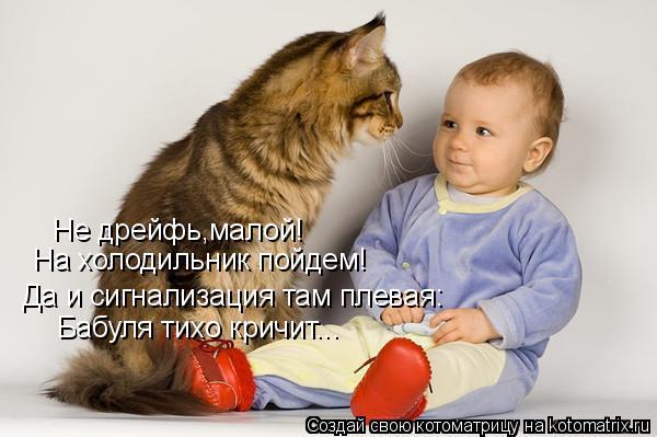 Котоматрица: Не дрейфь,малой! На холодильник пойдем! Да и сигнализация там плевая: Бабуля тихо кричит...