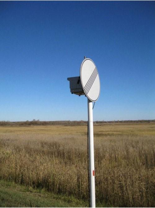 Где прячут радары хитрые ГАИшники…