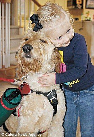 Маленькая больная девочка продолжает жить благодаря своему лучшему другу – собаке по кличке мистер Гиббс
