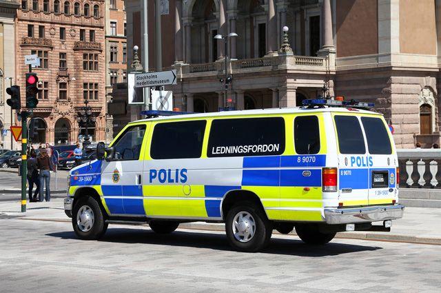 Швед, устроивший погром в российском посольстве, пройдет экспертизу