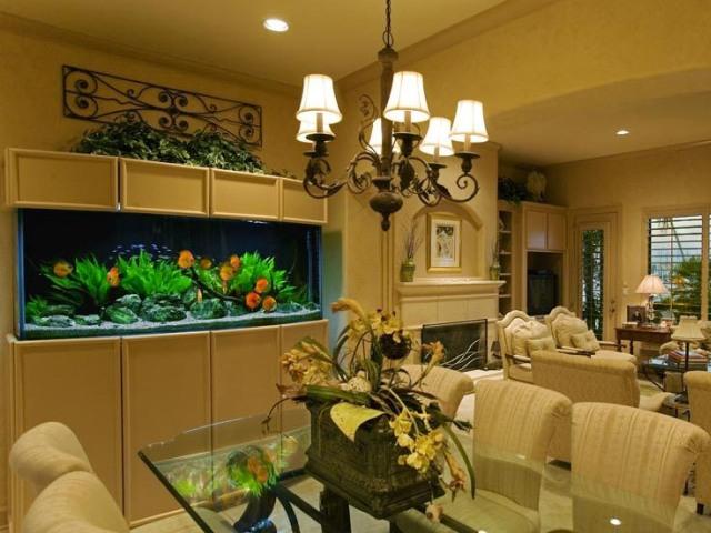 Подводный мир дома: размещаем аквариум