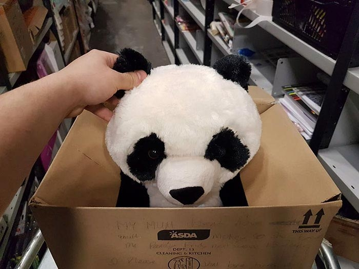 Эта плюшевая панда украла сердце 10-летнего Леона Эшворта из Ливерпуля, Британия дети, добро, игрушка, магазин, милота, панда, покупка, ребенок