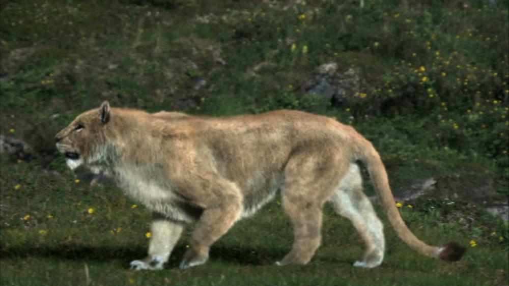 9. Пещерный лев (Якутия). динозавры, доисторические животные, животные, история