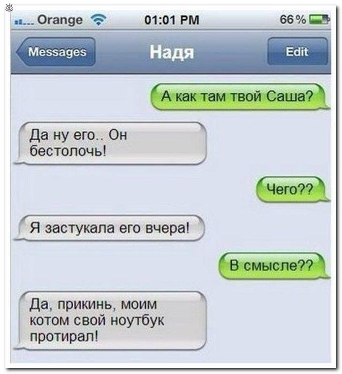 Саша Анекдот