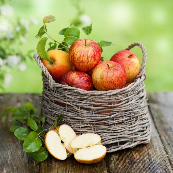 Беспроигрышные способы заготовок яблок на зиму