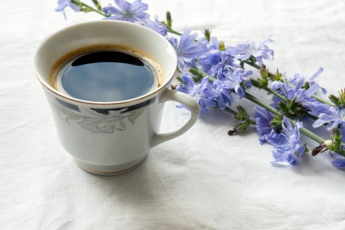 Почему по утрам стоит пить цикорий