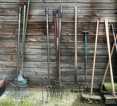 Как очистить огород от пырея