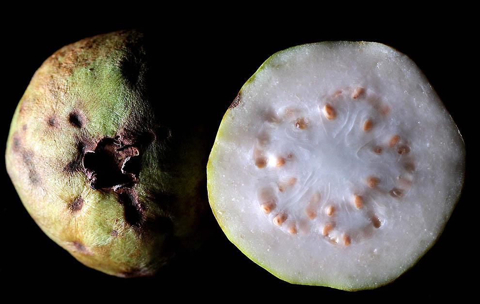 280 Экзотические фрукты