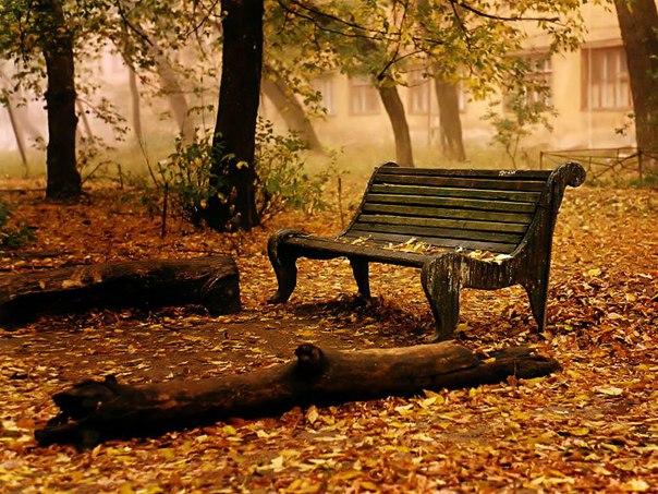 Осень — кофе, вкус корицы,  Сладкий сон, пушистый плед