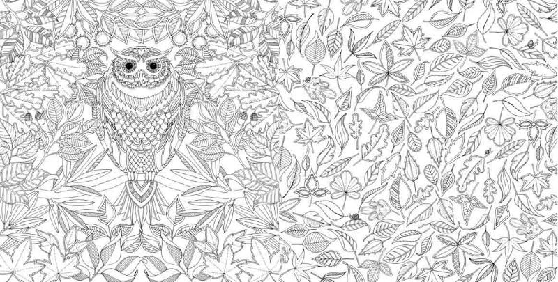 Купить волшебный сад раскраска антистресс джоанна басфорд