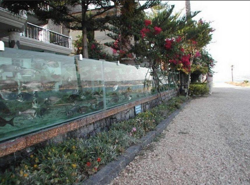 Ограда в виде аквариума