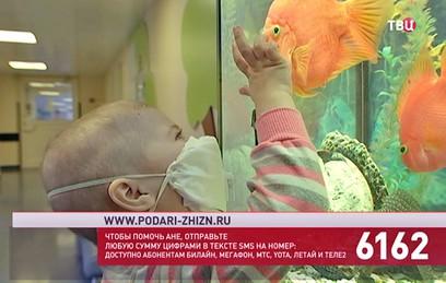 """Фонд """"Подари жизнь"""" и """"ТВ Центр"""" собирают средства на лечение Ани Соколовой"""