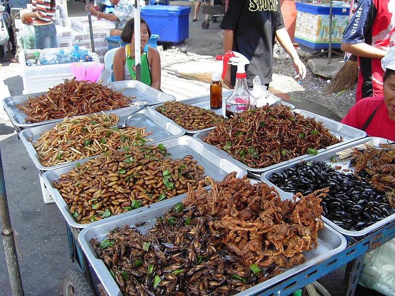 4. Жуки, скорпионы, кузнечики, плавунцы блюдо, мир, экзотика