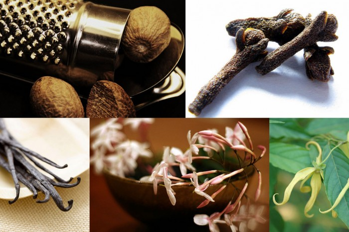 10 фактов о самых полезных запахах