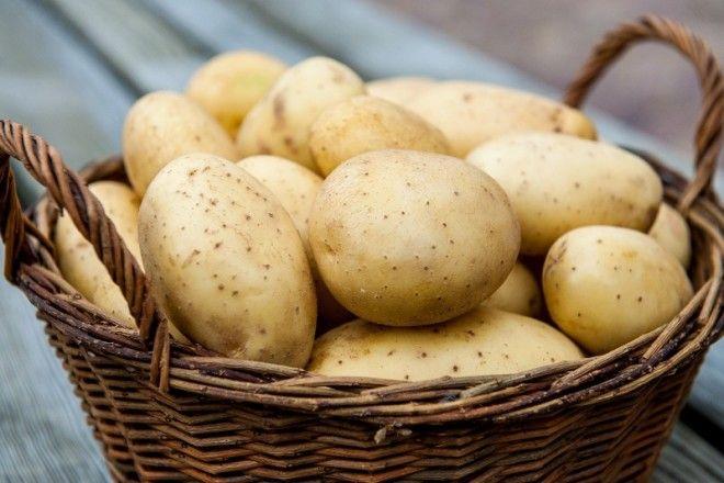 как использовать картофель