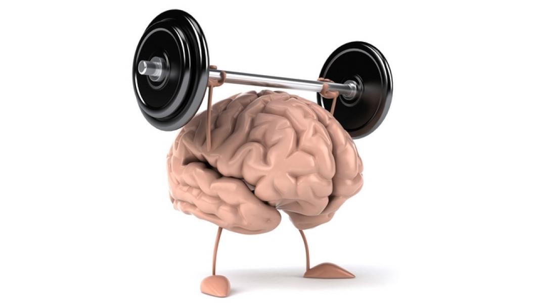 Как сохранить мозг молодым