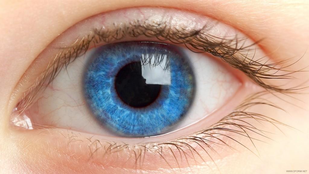 Гид по глазам. Самые частые ответы офтальмолога
