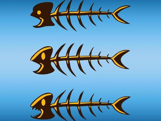 Жареная рыба убивает, а варе…