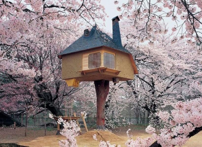 Домик на дереве, Хокуто, Япония