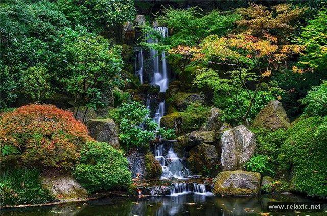 Japan-Park-014