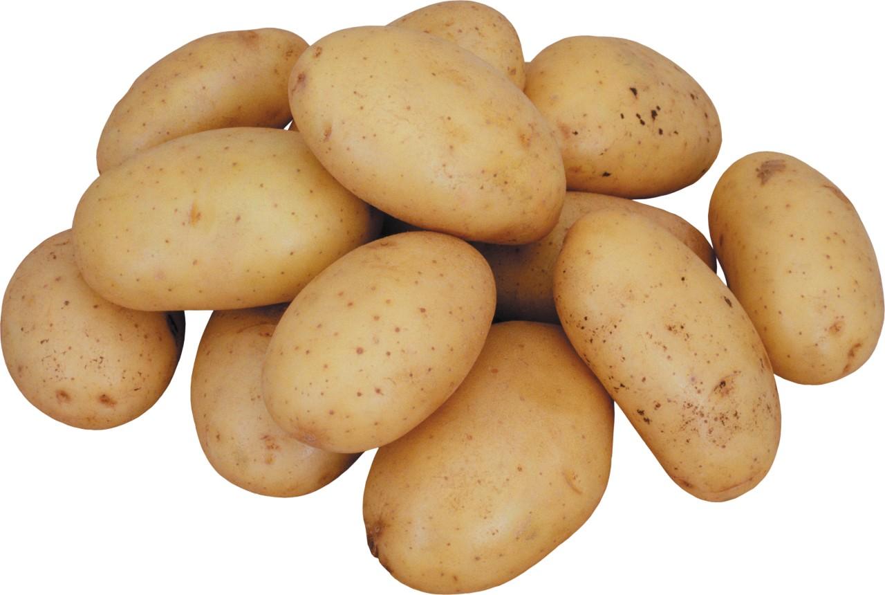 Сажаем картофель по - особому или а мой способ лучший
