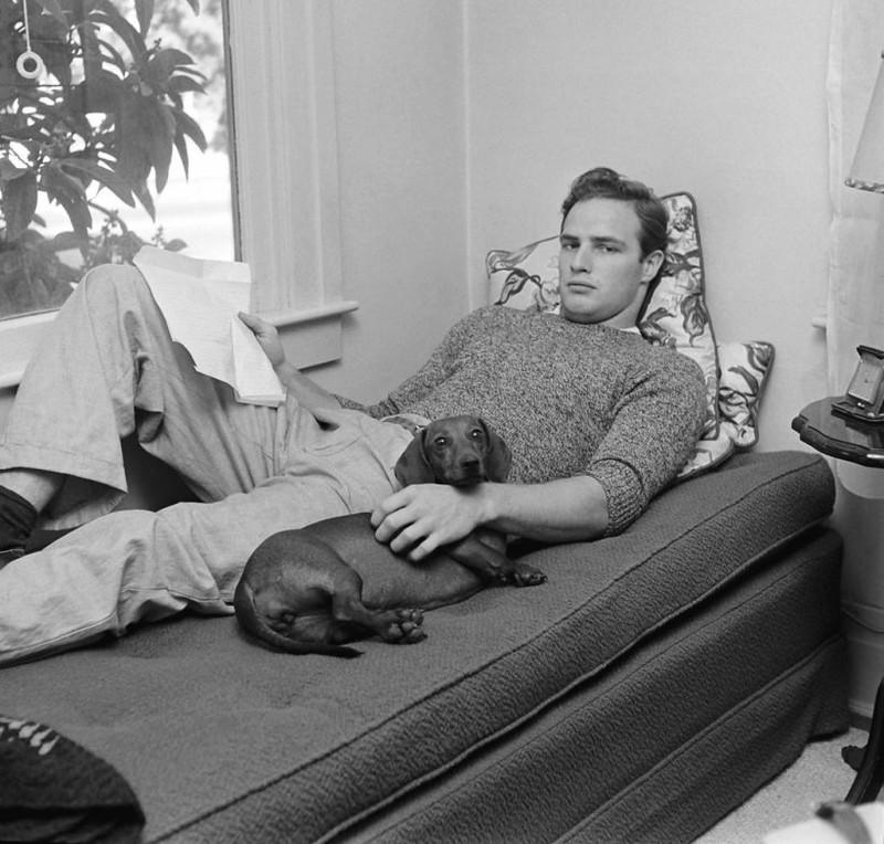 Марлон Брандо и его такса Kurtze Beiner