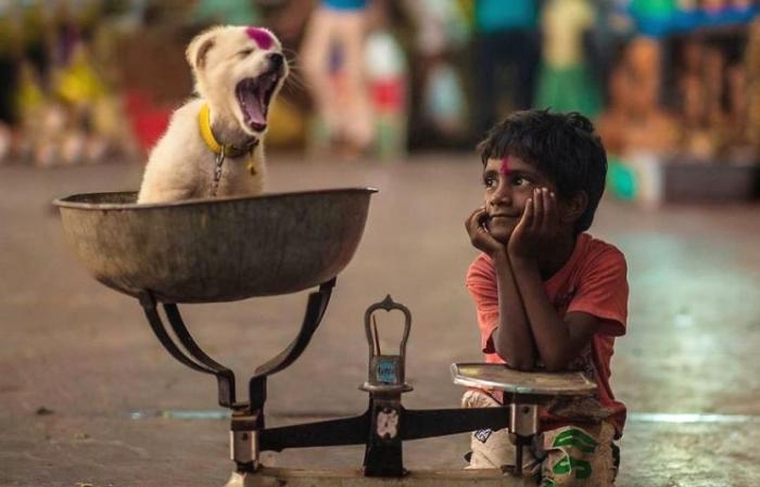 Дети  и животные  от фотографов со всего мира