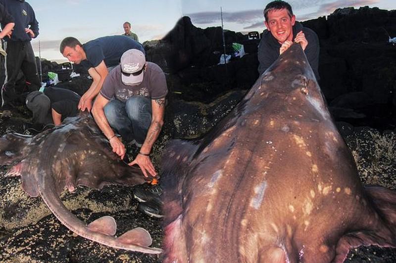 видео ловля рыбы самой крупной