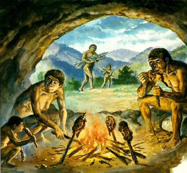 Ученые США: Кулинария и мясо сделали из обезьяны человека