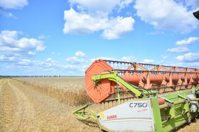 В России собрали 110 миллионов тонн зерна