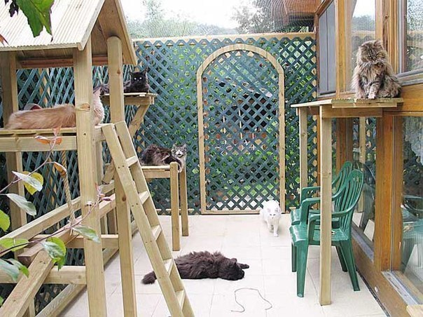 Строим вольер для животного на даче