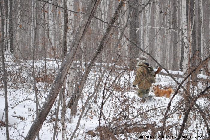 Охота на рябчиков, или белкование без белок