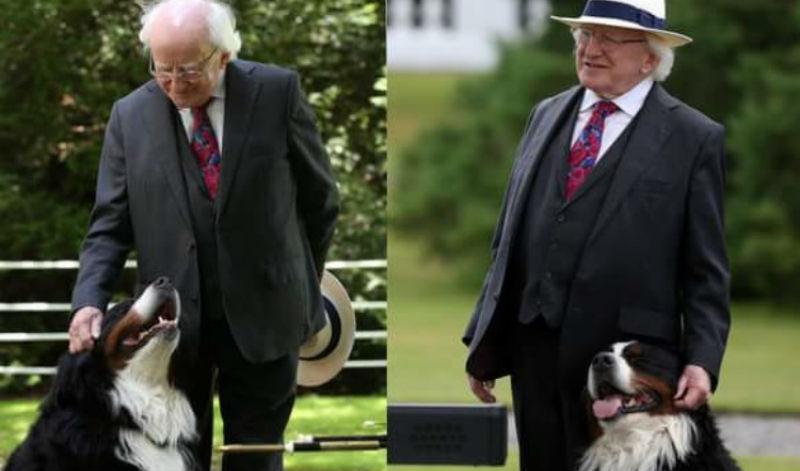 16 причин, почему президент Ирландии Майкл Хиггинс — лучший президент в мире