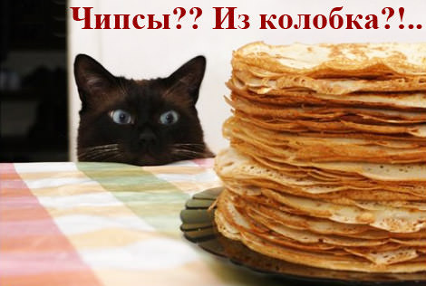 Кулинарные котоматрицы
