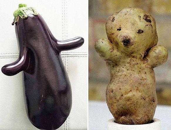 веселые фрукты и овощи 5 (582x441, 199Kb)