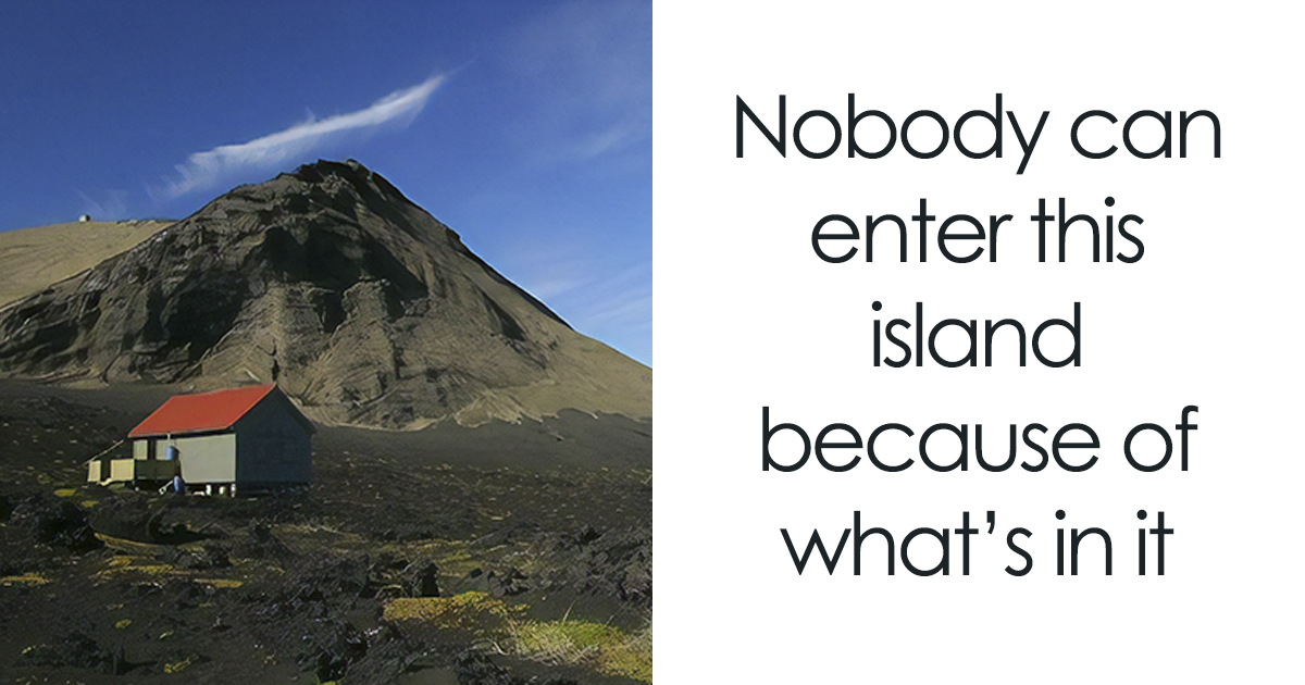 An Island Appeared In Iceland 55 Years Ago And No One Is Allowed To Enter It