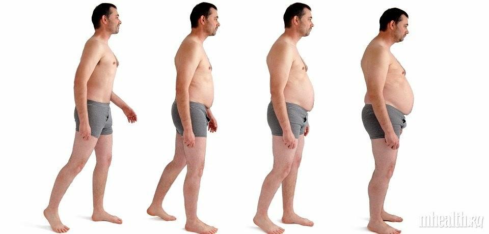 Ожирение: 7 органов, которые…