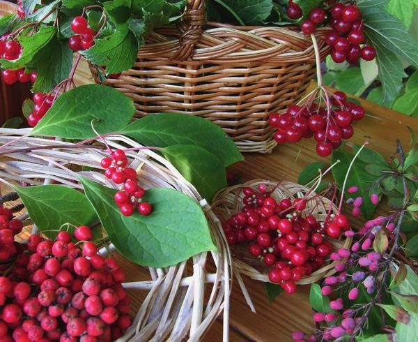 3 шага к красоте: рецепты ягодной косметики