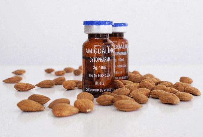 Профилактика рака — «неизвестный» известный витамин В17
