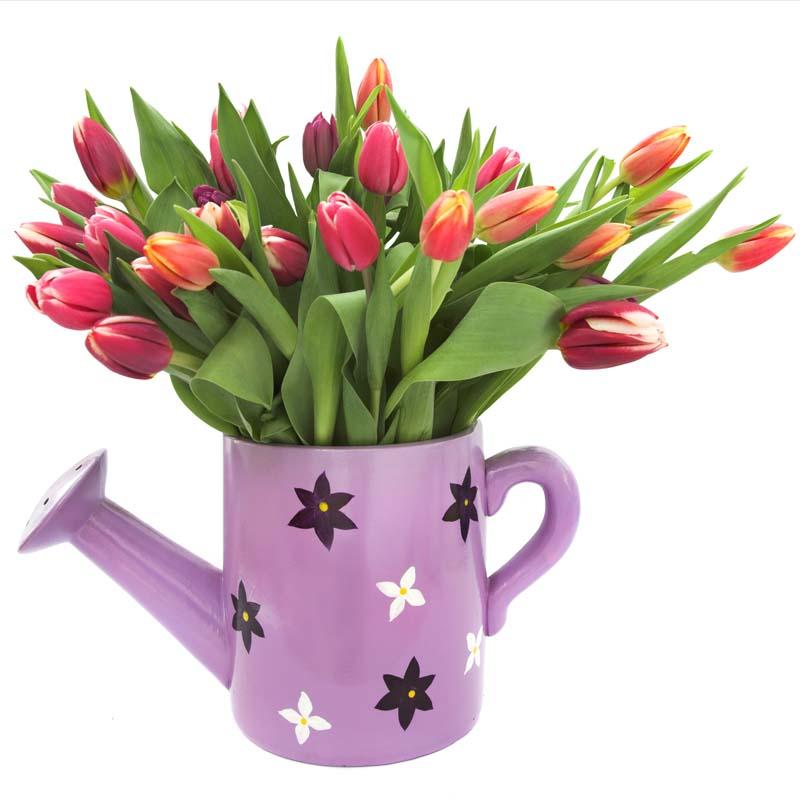 Милые, красивые, с праздником весны