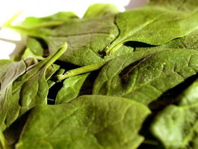 leafy-greens-are-full-of-iron-that-improves-concentration-levels