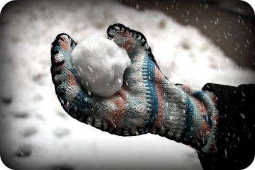 варежки и перчатки (2)