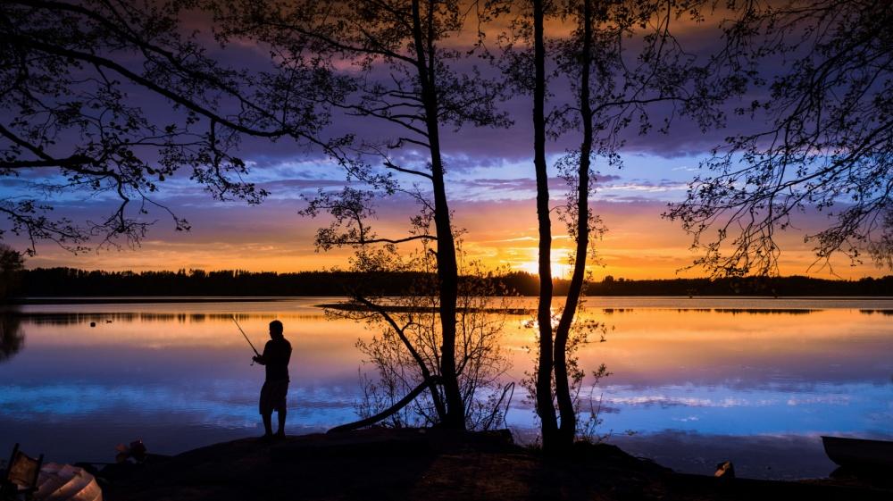 25 кадров, которые очаровали даже профессиональных фотографов